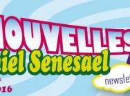 Bandeau News 397